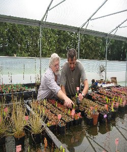 Allen Lowrie visit to Triffid Nurseries